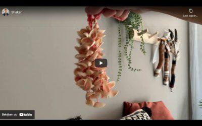 Shaker met pistache doppen